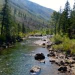 A wilderness river