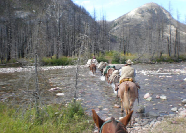 Crossing a river in the Bob Marshall Wilderness